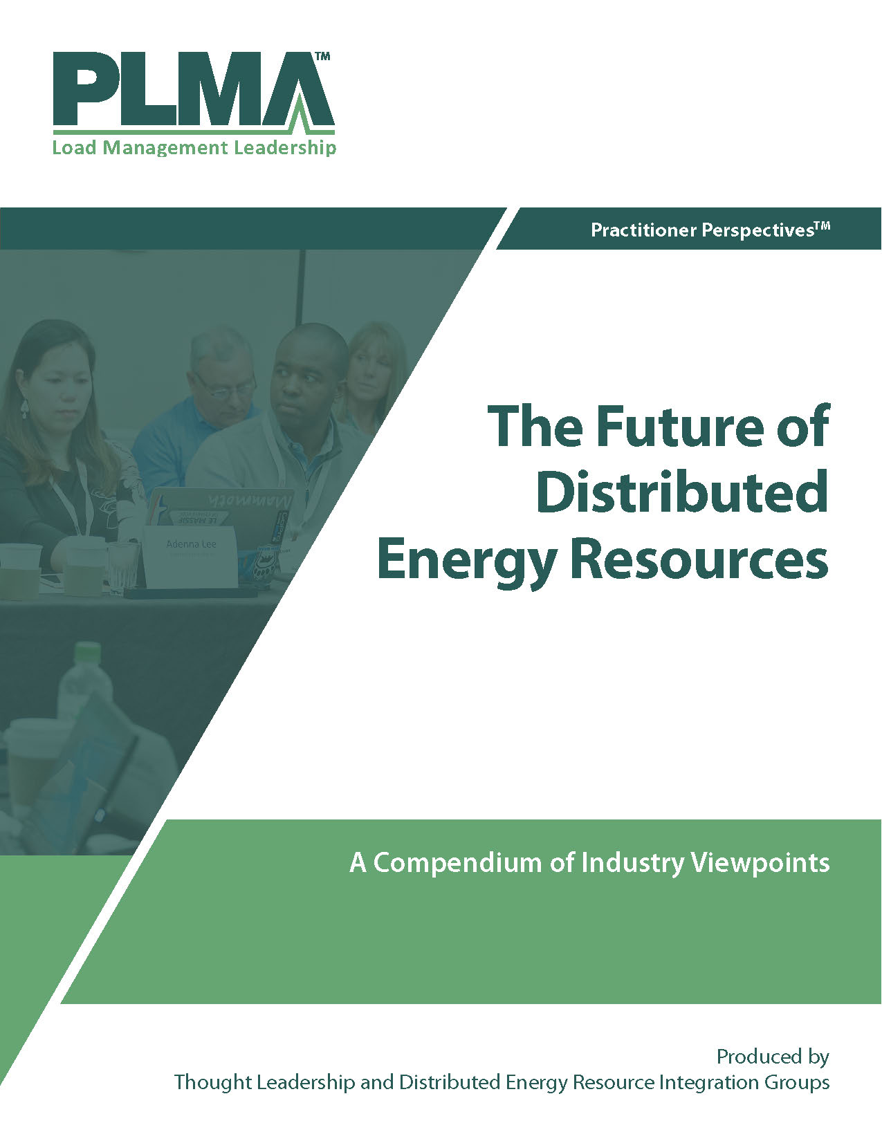 The Future of Distributed Energy Resources cover