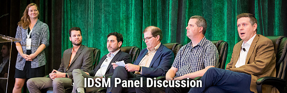 iDSM Panel Discussion